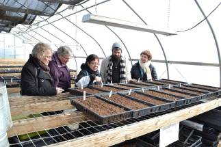 Sisters of Providence and Providence Associates who chose to tour and learn about the White Violet Center for Eco-Justice during their breakout session learn about seedlings in the greenhouse from Providence Associate and White Violet Center Intern Ezra Meadors, second from right. From left are: Providence Associate Betty Sloan, Sister Mary Moloney, Providence Associate Debra Prieto, Ezra and Sister Ellen Kehoe.